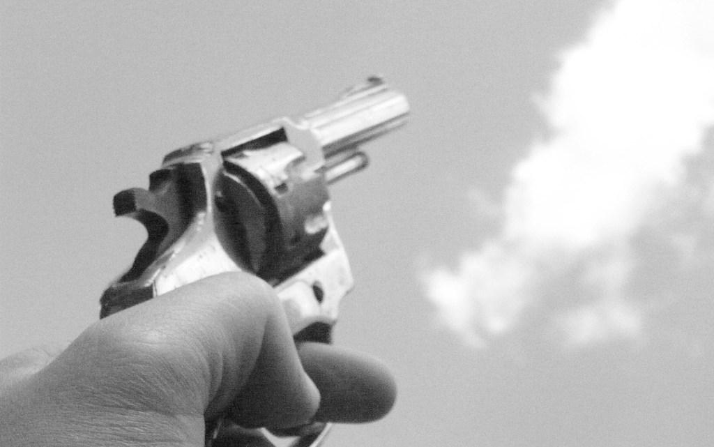 Propone diputada hasta tres años de cárcel a quien dispare al aire sin causa justificada