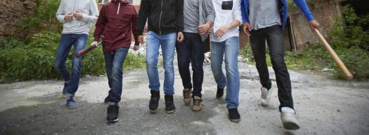 Sócrates A. Campos Lemus: Pandilleros centroamericanos invadieron el país
