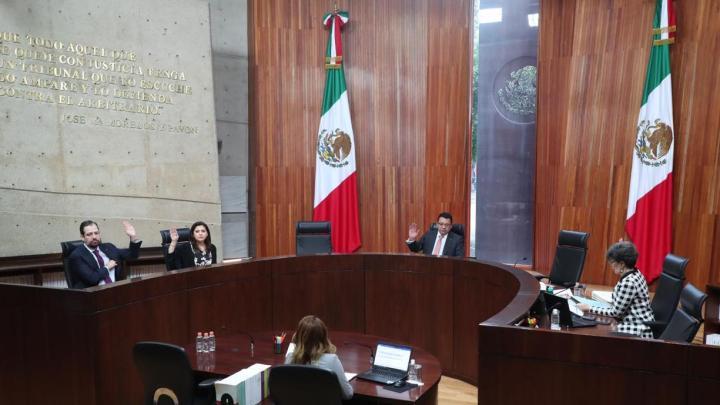 Ordena TEPJF al PRI dar trámite a denuncias de Lorena Piñón contra Ivonne Ortega