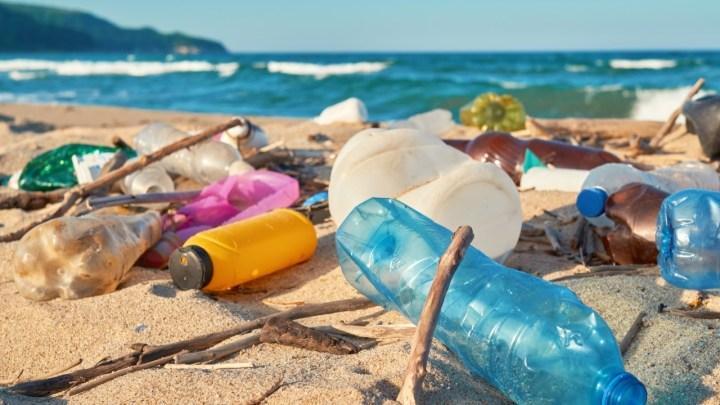 Ley de Turismo debe obligar a turistas a no contaminar playas, ríos y mares: Comisiones