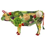 Diferenças entre Vegano x Vegetariano e outras dietas