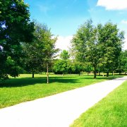 deep artful work road park trees green france