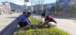 Tree Plantation, RC butwal Ramapithecus (2)