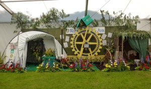 ayr flower show stand1