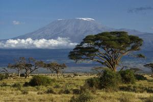 Image of Mount Kilimanjaro