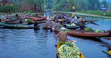 A floating vegetable market on Dal Lake.
