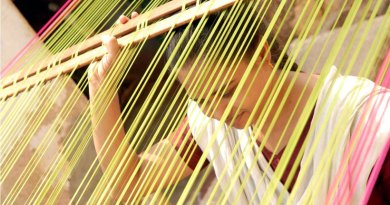 The warp before it joins the weft to make the fabric.