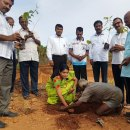 D 3000 Rotarians plant 30,000 saplings in a single day
