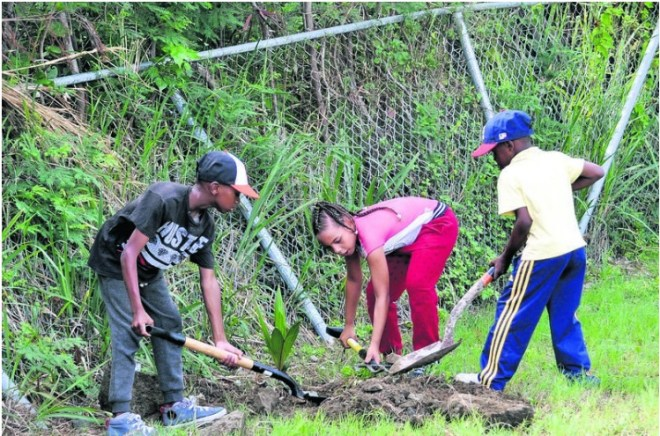 Children take part in greening drive at Rotary Club of St Maarten-Mid Isle.
