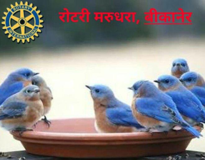 aviary-image-1522162691344-(1)