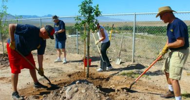Nine Mesquite Rotary Club members planted 15 trees along the fence line surrounding the ballfield at Beaver Dam Junior and Senior High School to fulfill both a request made by the District Governor and a need to beautify the high school. Photo: Teri Nehrenz