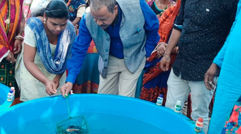 Women get trained in fish farming.