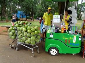 İbirapuera Parkı'nda Hindistan Cevizi suyu içmek serinlemenin en güzel yolu