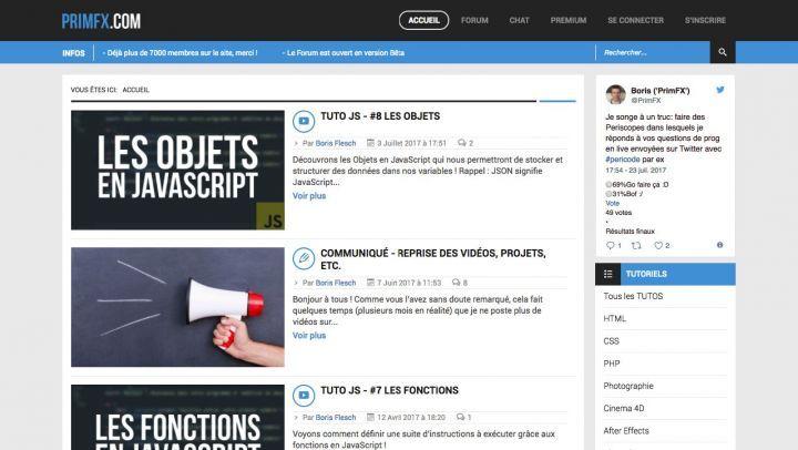 site web boris flesch primfx