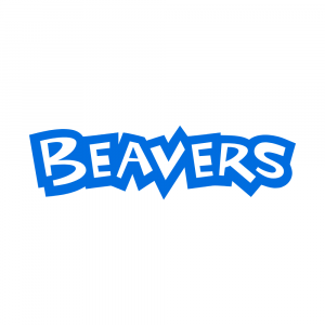 https://www.scouts.org.uk/volunteers/running-your-section/running-a-beaver-colony/beaver-socially-distanced-activities/