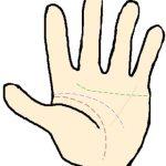 小指下の水星線は健康線に似ているけど財運や才能を見る線です!