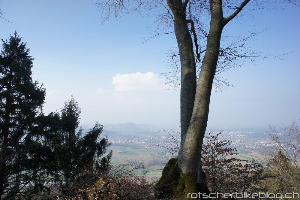 Schienerberg-23.3.12-007