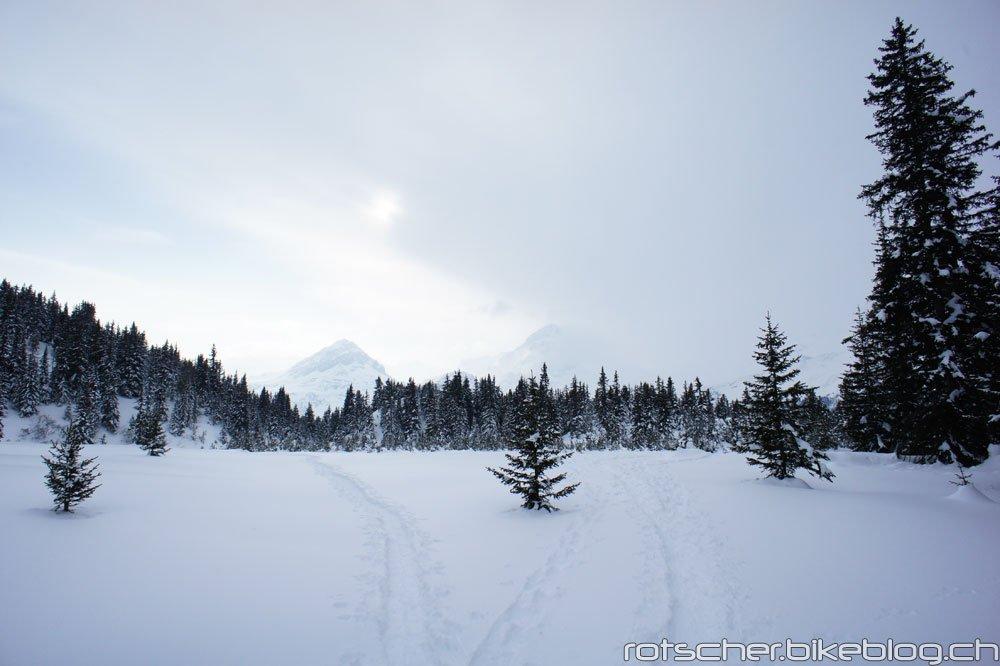 Schneeschuh-Alp-Flix-103