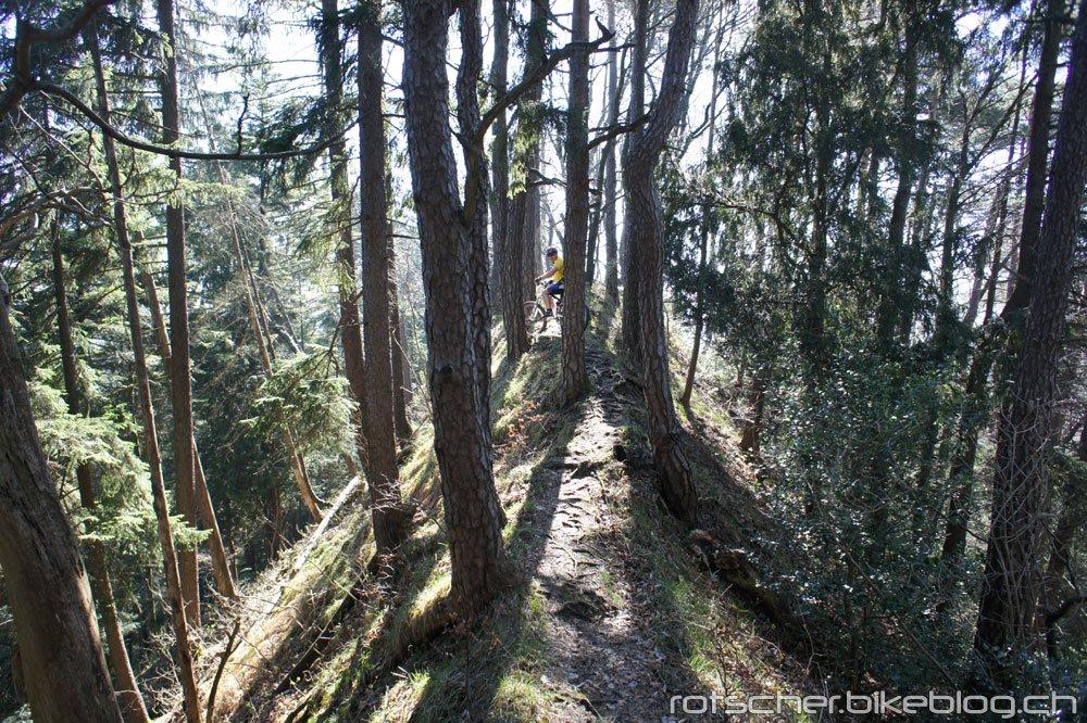 Hoernli-Schnebelhorn-002