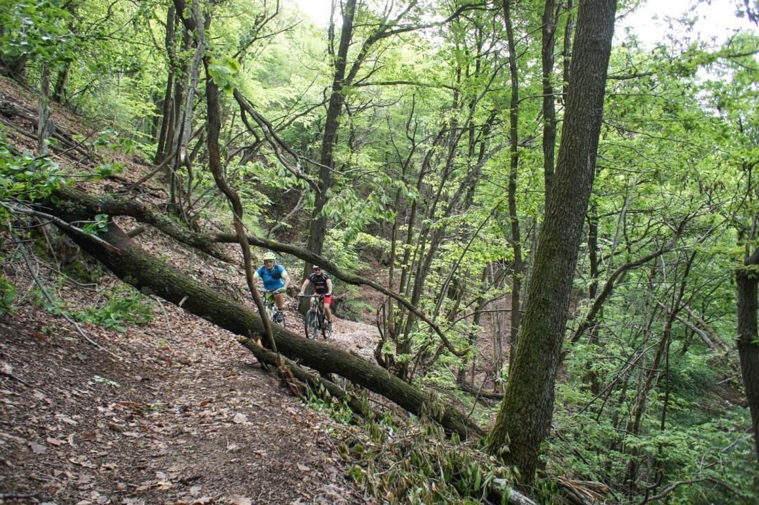 Malcantone Trail mit natürlichen Hindernissen