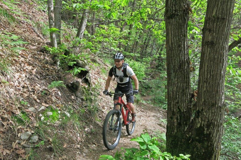 Rotscher auf einem Malcantone Trail