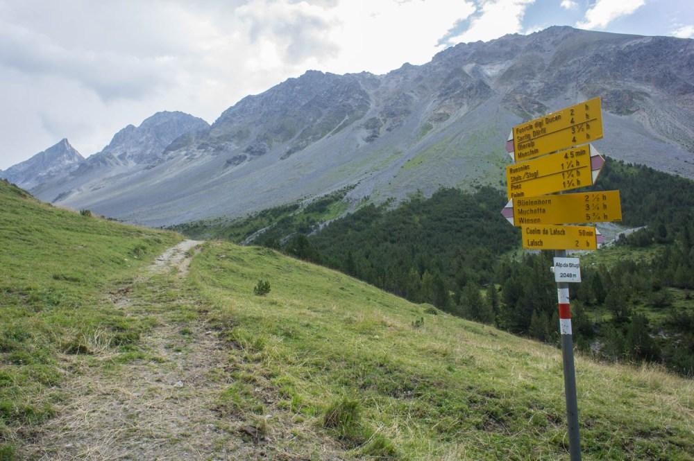Alp da Stugl