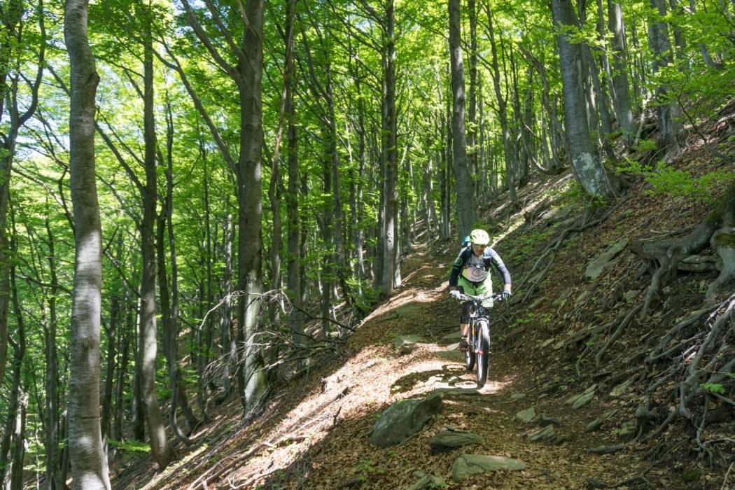 Trail Richtung Rasa