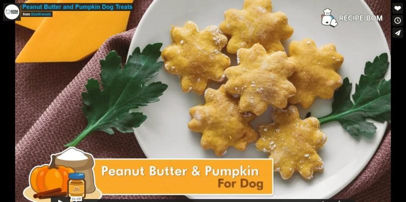 pumpkin peanut butter dog treats recipe