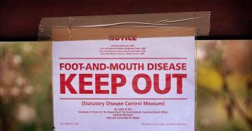NHF-FMD-Keep-Out
