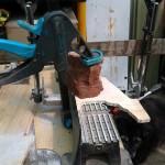 Zebra Stone clamped on dry saw