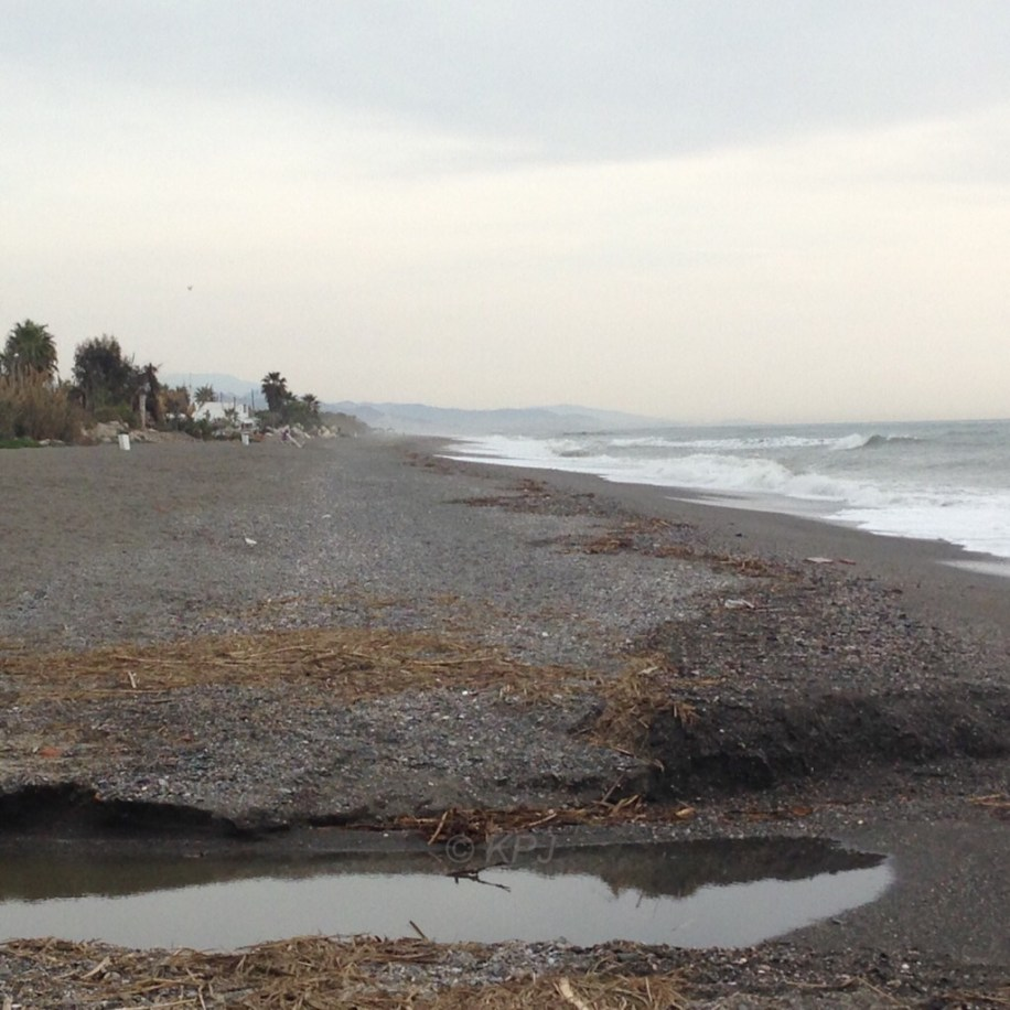 The stream bed meets the beach