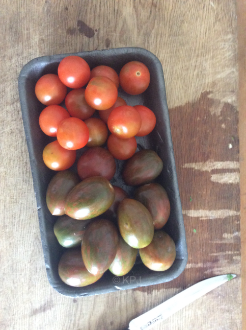 Cherry tomatoes and er, some rather unimpressive designer toms