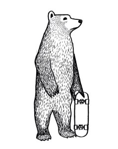 Bear and Skateboard