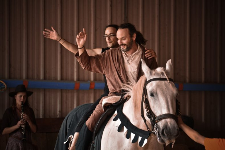 seeking groom for horse drawn caravan gypsy convoy