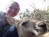 Kangaroo selfie!!