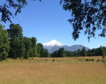 Pause along the bike ride outside of Pucon