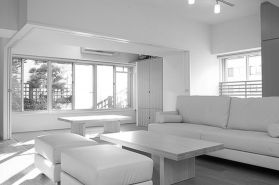 Amazing black and white furniture ideas 14
