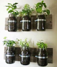 Amazing indoor wall herb garden ideas (5)
