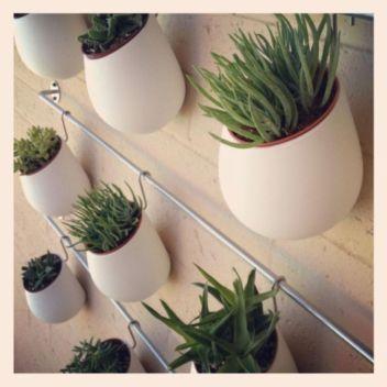 Incredible indoor hanging herb garden (14)