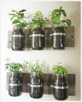 Incredible indoor hanging herb garden (18)