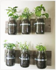 Incredible indoor hanging herb garden (18)