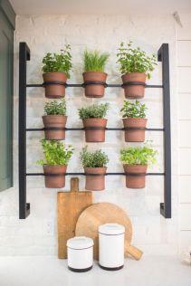 Incredible indoor hanging herb garden (20)