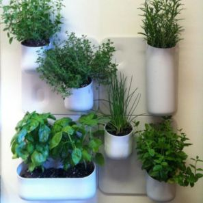 Incredible indoor hanging herb garden (5)