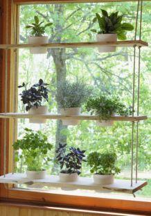 Incredible indoor hanging herb garden (9)