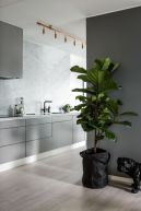 Kitchens design ideas with green walls 07