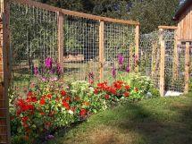 Stunning vegetable garden fence ideas (3)