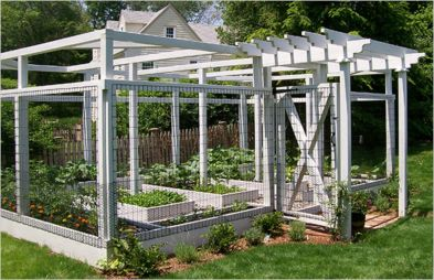 Stunning vegetable garden fence ideas (6)