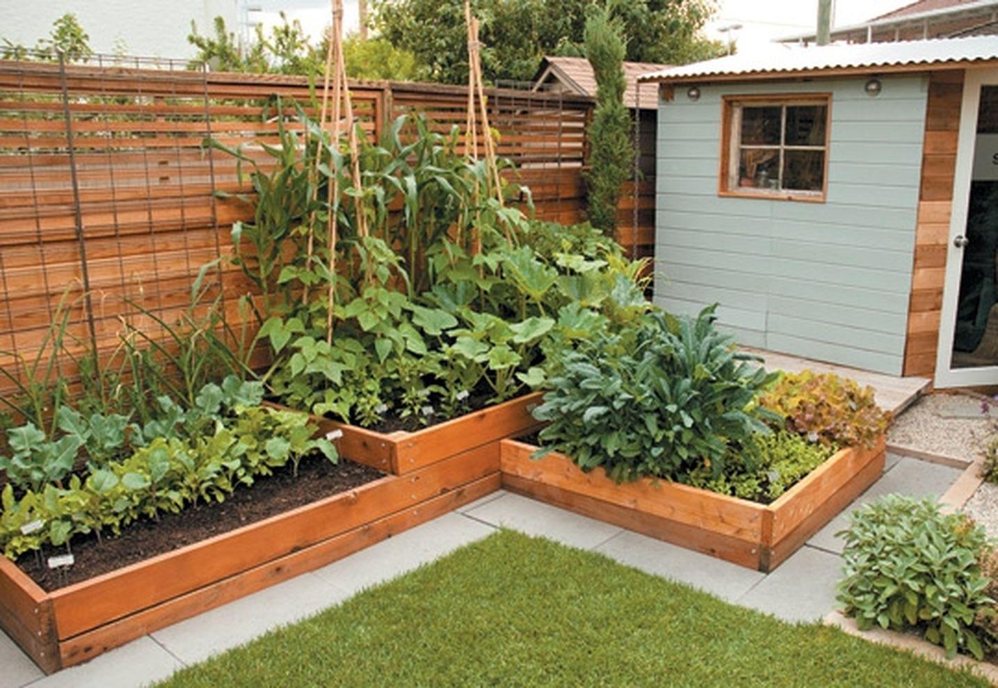 Elegant Affordable Backyard Vegetable Garden Designs Ideas 01