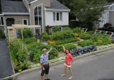 Affordable backyard vegetable garden designs ideas 13