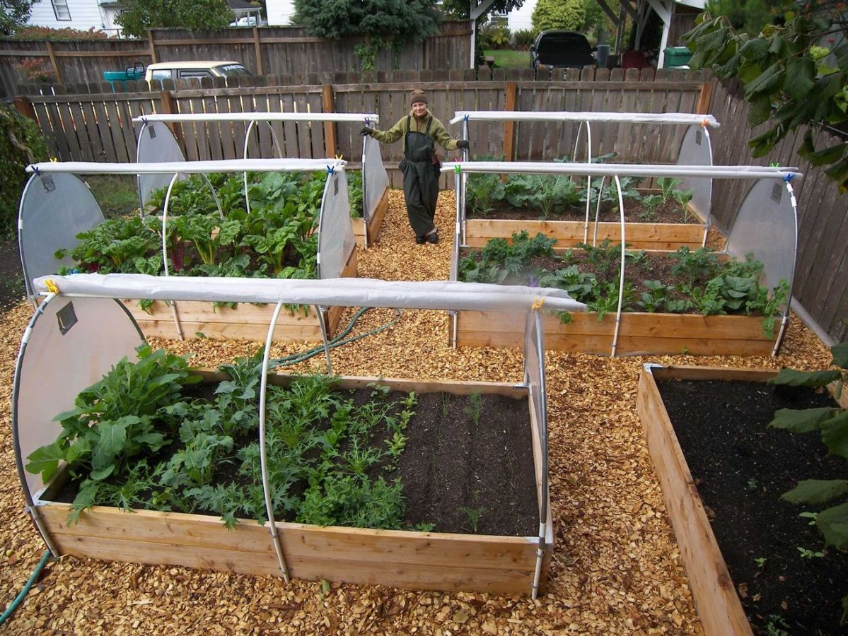 Affordable backyard vegetable garden designs ideas 16